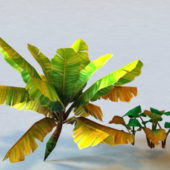 Nature Tropical Plant Low Poly