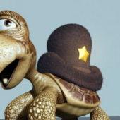 Cute Turtle Cartoon Character