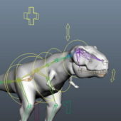 Tyrannosaurus Animal Rigged