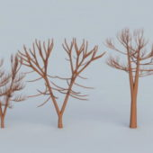 Winter Trees Branches