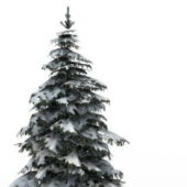 Winter Snow Spruce Tree Plant