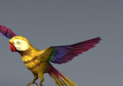 Yellow Parrot Bird Animal